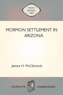 Mormon Settlement in Arizona