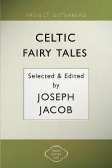 Celtic Fairy Tales by Unknown