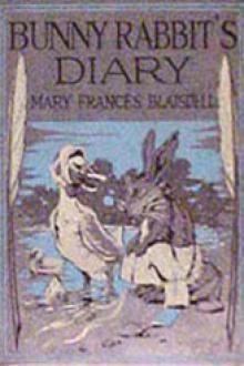 Bunny Rabbit's Diary by Mary Frances Blaisdell
