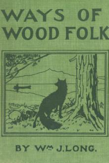 Ways of Wood Folk by William J. Long