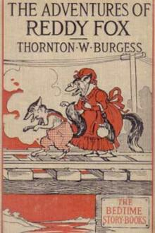 The Adventures of Reddy Fox by Thornton W. Burgess