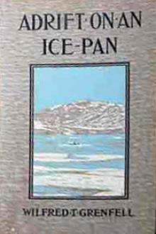 Adrift on an Ice-Pan by Sir Grenfell Wilfred Thomason