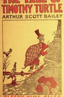 The Tale of Timothy Turtle by Arthur Scott Bailey