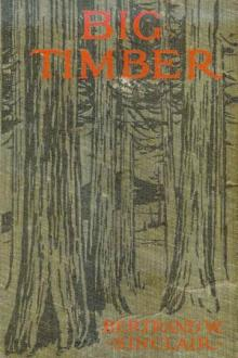 Big Timber by Bertrand W. Sinclair