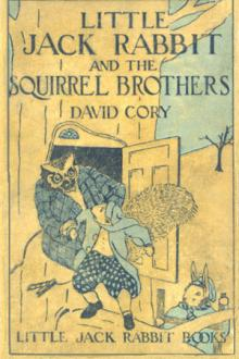 Little Jack Rabbit and the Squirrel Brothers by David Cory