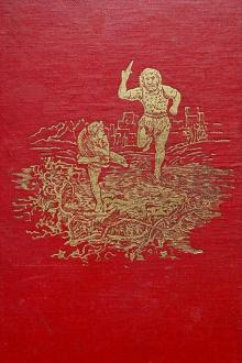 The Red Fairy Book by Andrew Lang