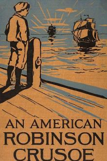 An American Robinson Crusoe by Samuel B. Allison