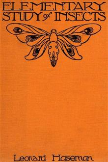 An Elementary Study of Insects by Leonard Haseman