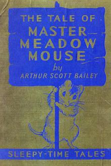 The Tale of Master Meadow Mouse by Arthur Scott Bailey