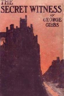 The Secret Witness by George Gibbs