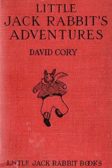 Little Jack Rabbit's Adventures by David Cory