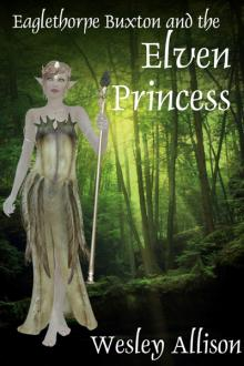 Eaglethorpe Buxton and the Elven Princess by Wesley Allison