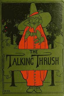 The Talking Thrush