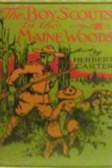 The Boy Scouts in the Maine Woods by active 1909-1917 Carter Herbert