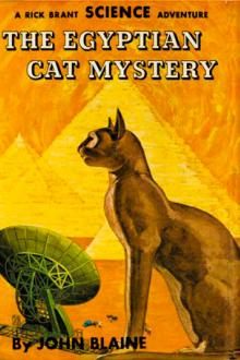 The Egyptian Cat Mystery by Harold Leland Goodwin