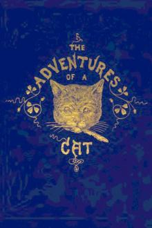 The Adventures of a Cat by Alfred Elwes