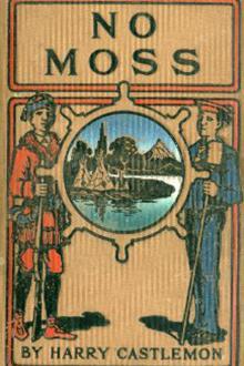 No Moss