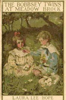 The Bobbsey Twins at Meadow Brook by Laura Lee Hope