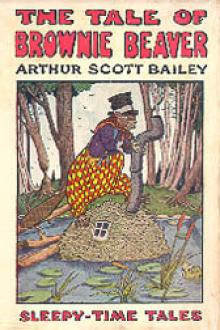 The Tale of Brownie Beaver by Arthur Scott Bailey