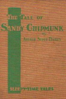 The Tale of Sandy Chipmunk by Arthur Scott Bailey